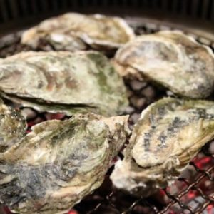 Oysters and Other Poems