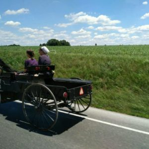 An Indian Abroad in Amish Country