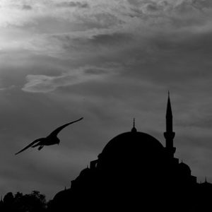 Encountering Sulemaniye Mosque